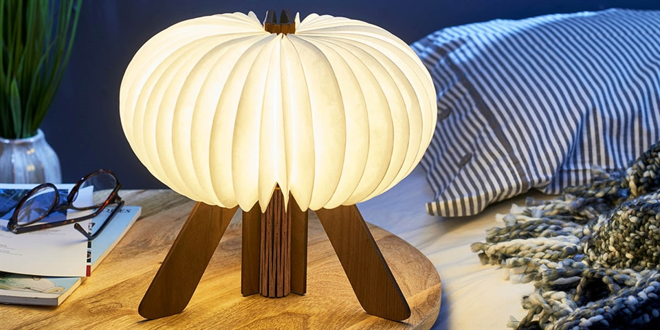 Gingko Technology The R Space Light
